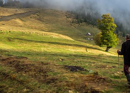 PENTAX-K-5-13-10-2012-16-48-43